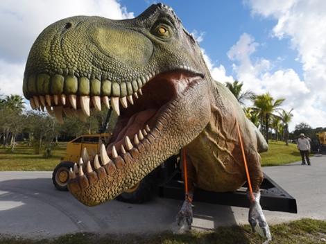 dinossaurs live