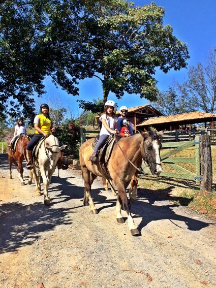 Fazenda Capoava Cavalo Vi