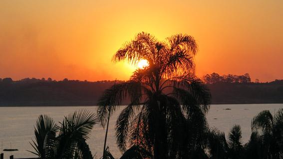 por do sol palmeira