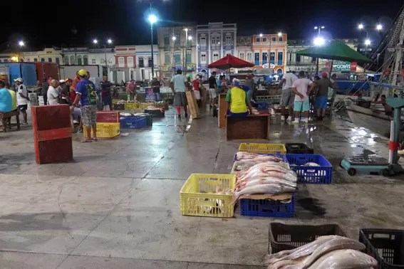 Peixes chegam de madrugada ao Mercado Ver o Peso