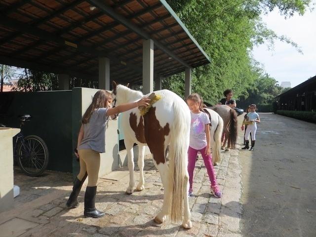 Colônia de Férias SHP - limpeza de cavalos