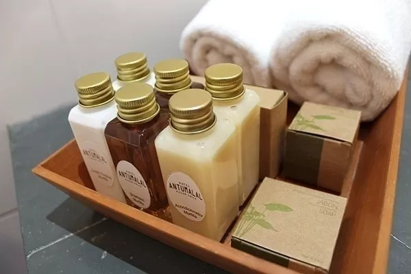 Hotel Antumalal Pucon Amenities