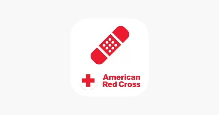 aplicativo de viagem - first aid