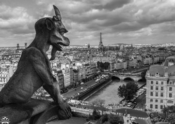 The ever famous gargoyles at the cathedral of Notre Dame, Paris. If these guys could talk, what tales they could tell! Watching Paris adapt and change over the centuries.