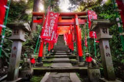 These Torii gates line your way up a mountain to a traditional Shinto shrine in Kamakura Japan.www.patreon.com/ajbarse