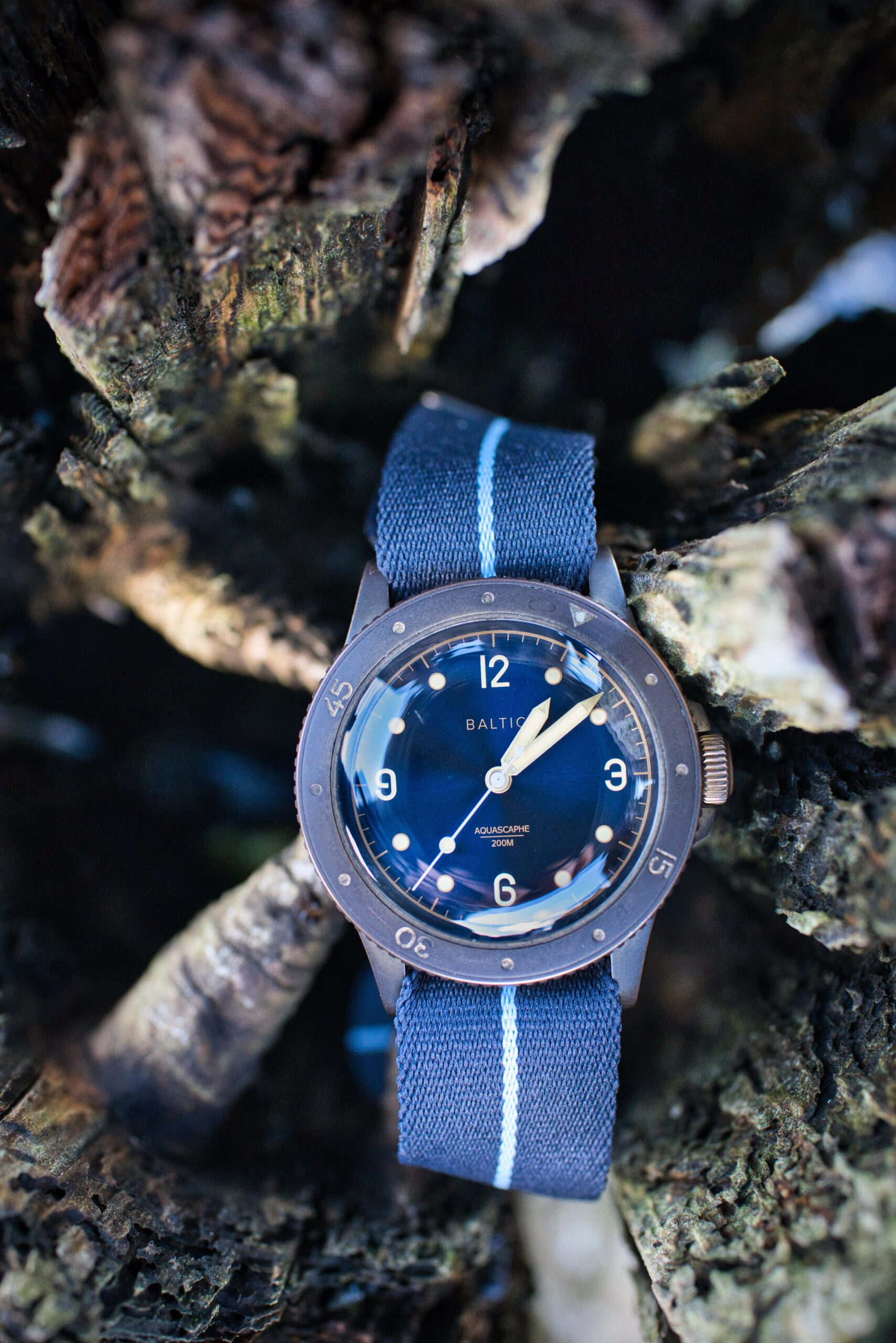 Baltic Bronze on EB Heritage Strap blue with light blue center line. Sitting in drift wood.