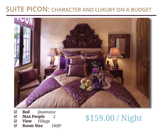 Suite Picon Is Our Most Economical Room However It Has A Full Walkin Closet  With All The Room Amenities Of Our Most Expensive Room.