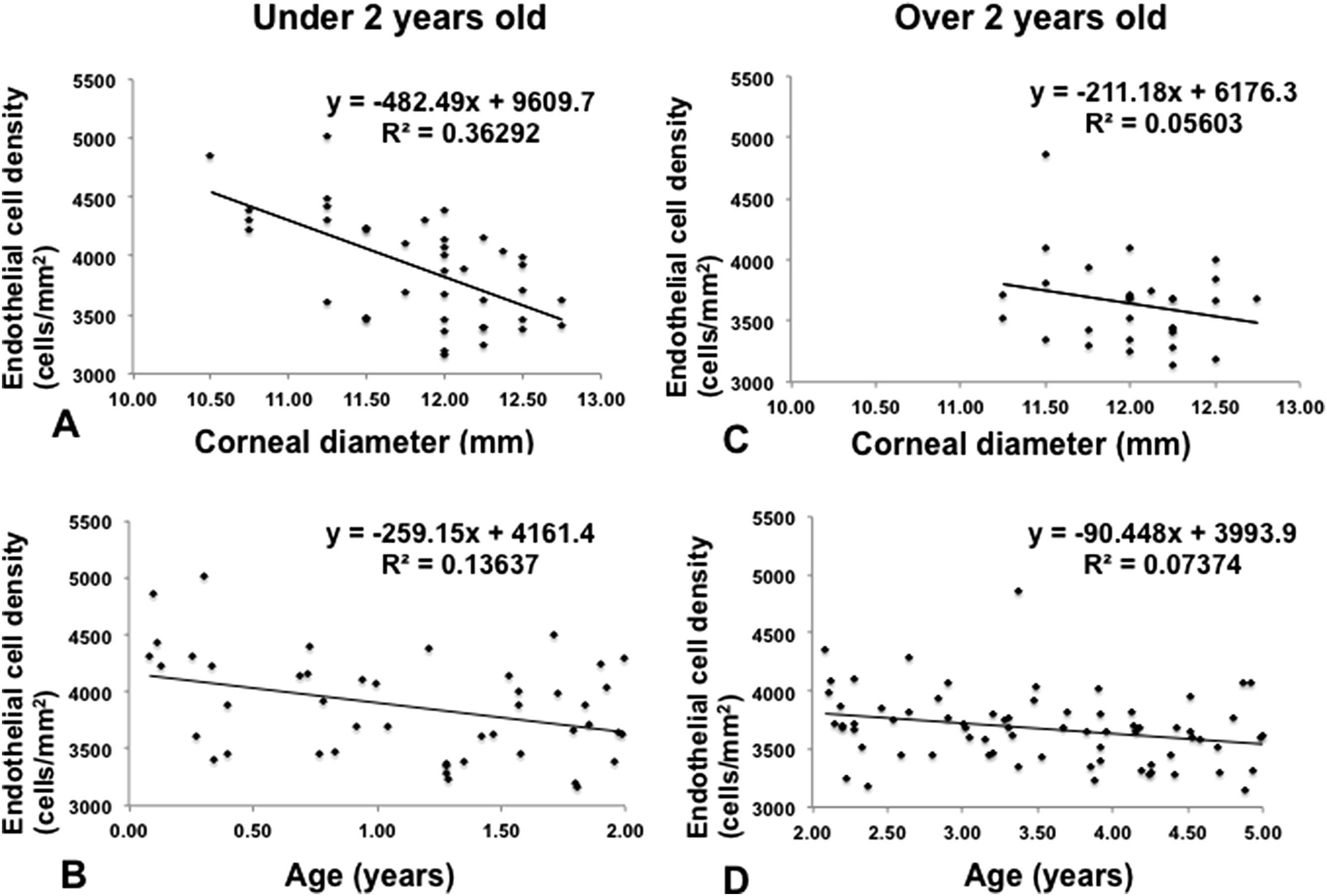 Corneal Endothelial Cell Density In Children Normative Data From Birth To Five Years Old