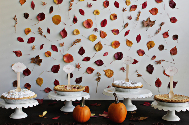 Autumn Leaf Backdrop | How To Throw The Best Fall Harvest Party On Your Homestead