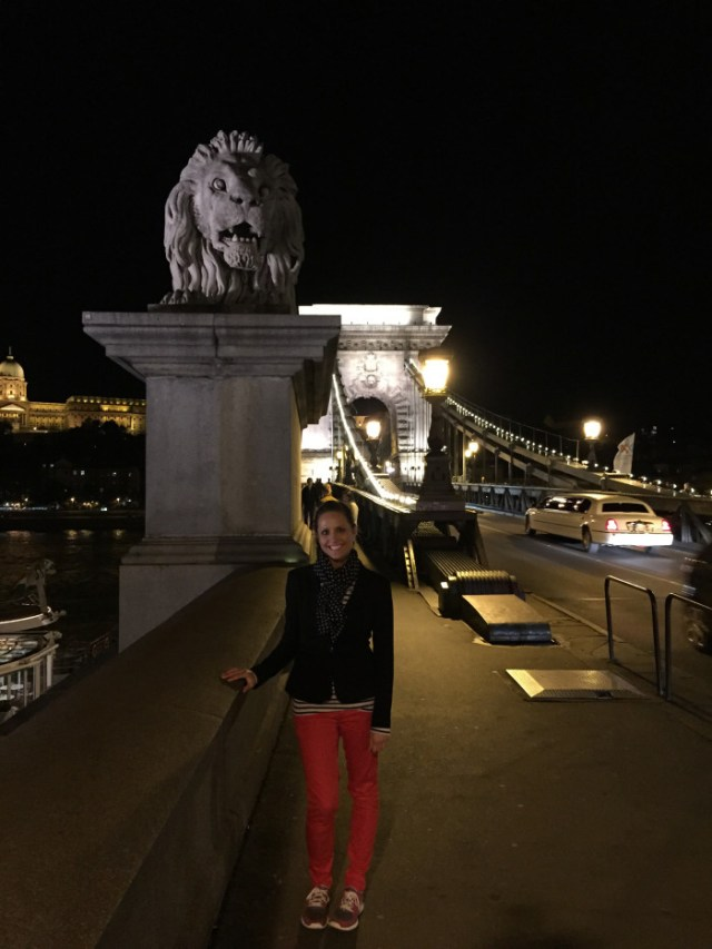 budapest chain bridge mal