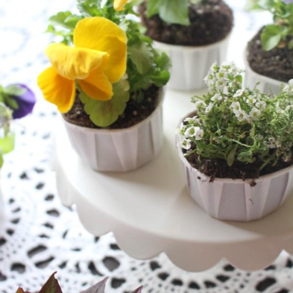 Cupcake Flower Pots