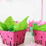 Watermelon Box Party Favors