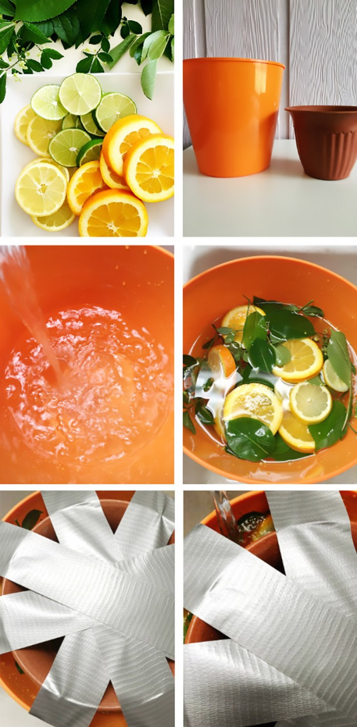 Make a pretty citrus filled ice bucket, perfect for summer parties. Via ajoyfulriot.com