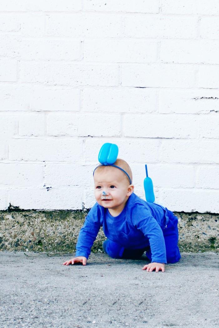 DIY blue dog balloon dog balloon animal halloween costume DIY