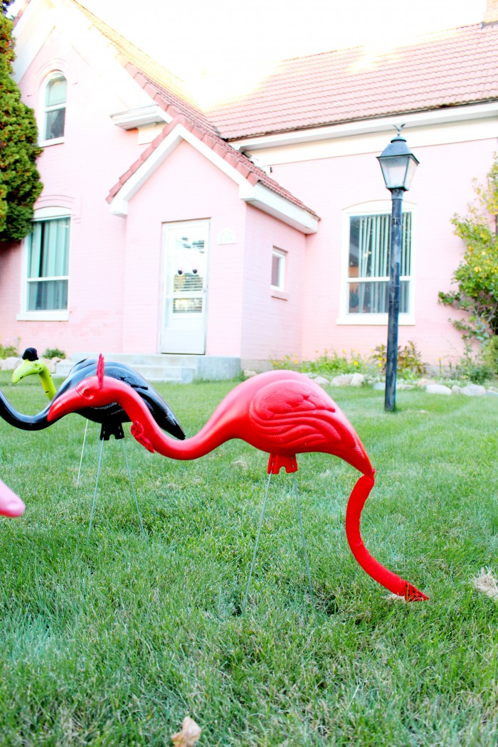 DIY devil costume for a lawn flamingo
