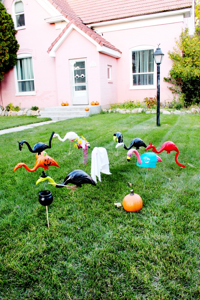 DIY lawn flamingos in halloween costumes halloween lawn flamingos