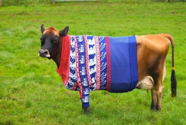Send a cow