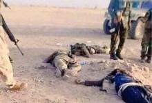 """صورة ديالى تعلن مقتل مسؤول مفارز """"داعش"""" الارهابي في حوض الزور واحد مرافقيه"""