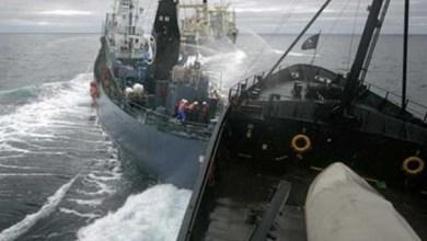 صورة فقدان 32 شخصا باصطدام ناقلة نفط بسفينة شحن  قرب الساحل الشرقي للصين