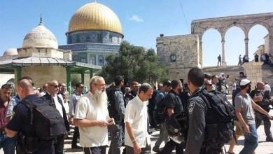 صورة مجموعات من المستوطنين يقتحمون باحات المسجد الأقصى