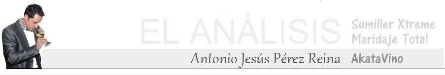 Antonio Jesús Pérez AkataVino