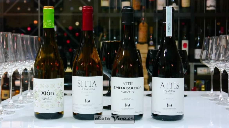 Attis Bodega y Viñedos © Guía AkataVino