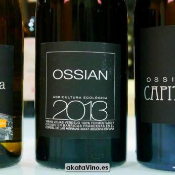 Ossian Vides y Vinos © Guia AkataVino