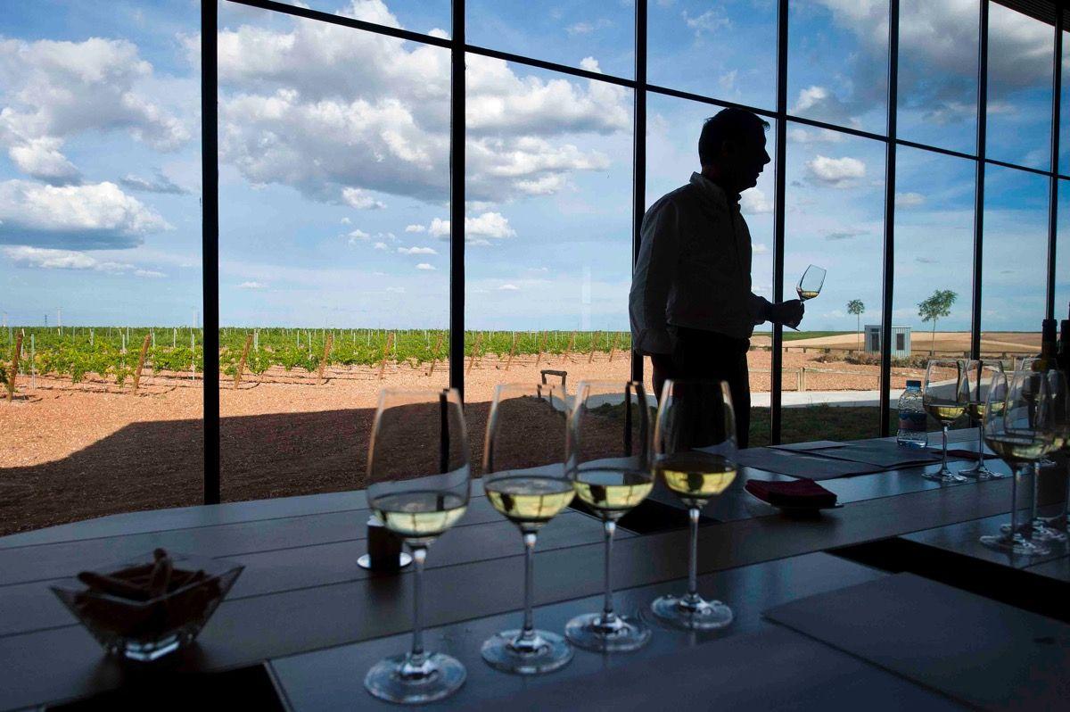 La ruta del vino de Rueda vuelve a Fitur como referente del enoturismo