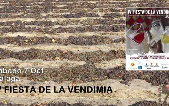 Collage IV Fiesta de la Vendimia Malaga © Akatavino Magazine