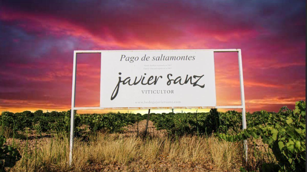 Vive la experiencia de la vendimia a la puesta del sol | Javier Sanz Viticultor