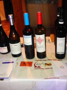 Evento ASM I Salon de Vinos 2014.12.01 (16)
