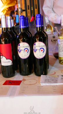 Evento ASM I Salon de Vinos 2014.12.01 (204)