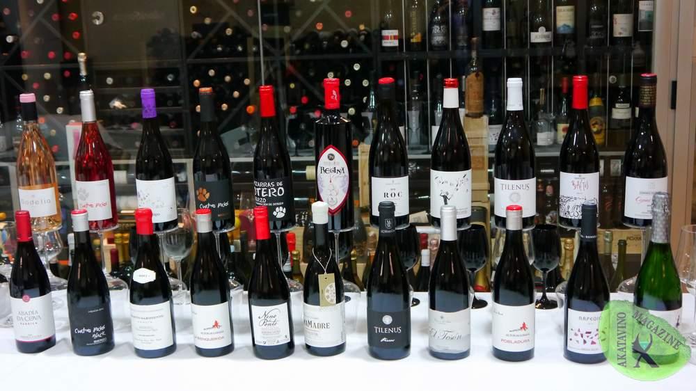 Mejores Vinos Mencía Territorio Mencia TOP 30 © Akatavino (76)