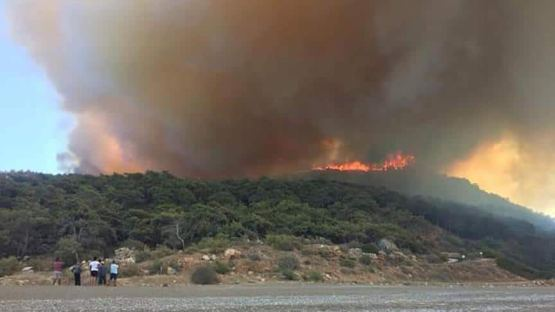 Antalya'da Çıkan Orman Yangınında 3 Hektar Alan Yandı