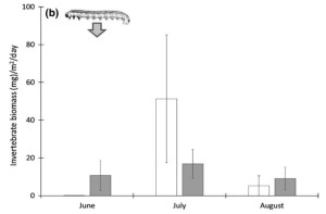 Seasonal pattern of terrestrial prey subsidies in Southcentral Alaska streams. Part of Figure 5 from Roon et al. (2018).