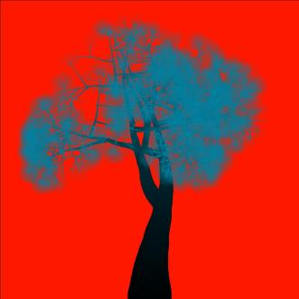trees06-0165