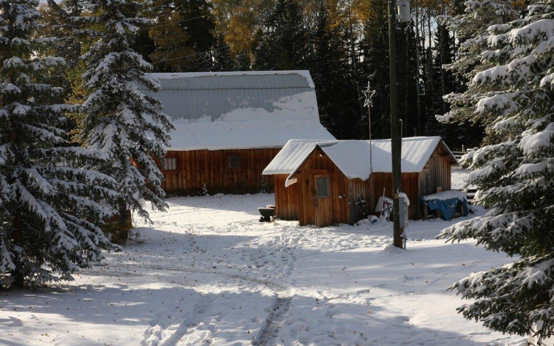 Snow fall #2