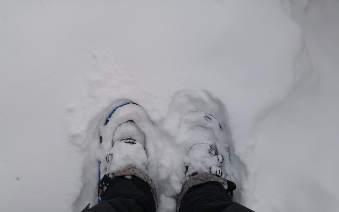 Doing farm chores with snow shoes!
