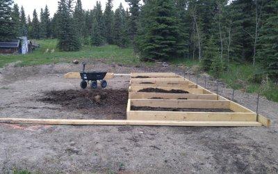 Update on hoop house