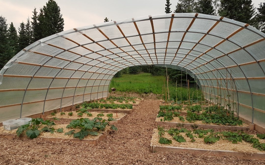 Hoop house – almost there!