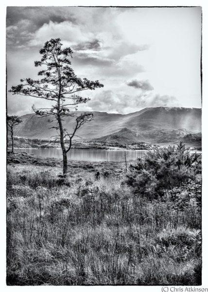 Loch Torridon (B&W)