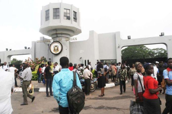 Nigerian Undergraduate