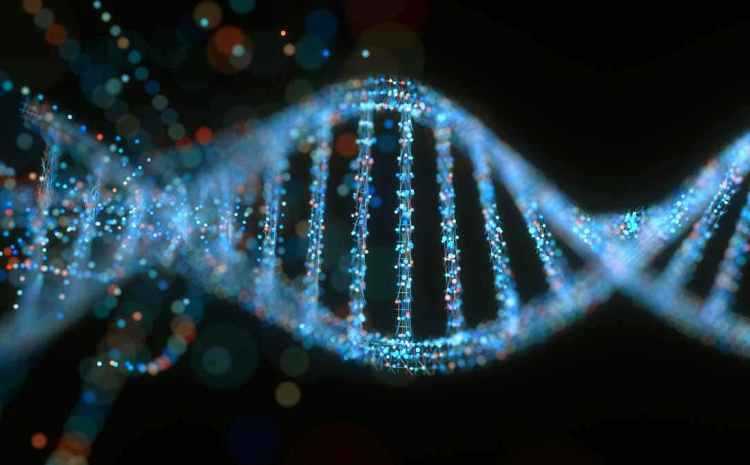 Why Every Father Must Conduct DNA On Their Children – Nigerian Man