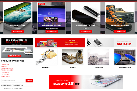eCommerce Business Website