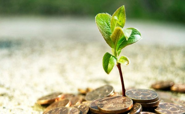 How To Find The Right Investment Advisor For Yourself?