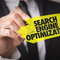 4 Tips to Choose Best SEO Specialist for Your Business