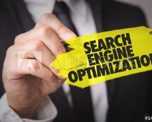 Best SEO Specialist