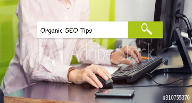 7 Organic SEO Tips for Free Website Visitors
