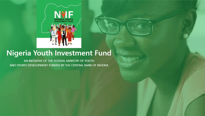 How the Nigeria Youth Investment Fund (NYIF) Works