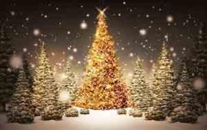 vianoce nakupovanie